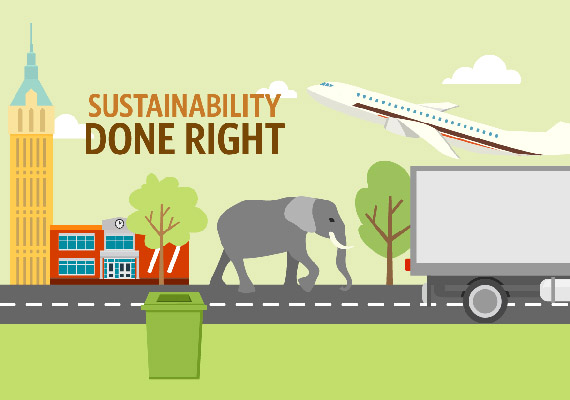 Infographic: Sustainability Done Right